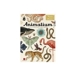 Libro: Animalium