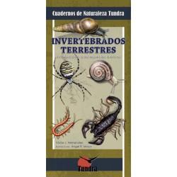 Cuadernos de naturaleza: Invertebrados terrestres