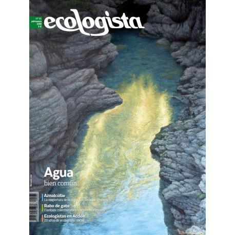 Ecologista nº 95